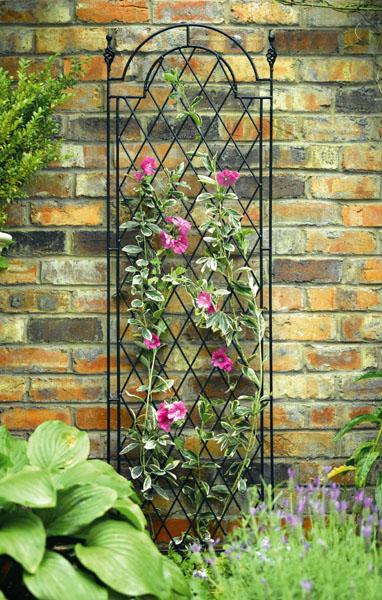 Подставки для вьющихся цветов в саду
