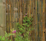 Bamboo Cane Fence 4m x 2m