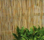 Reed Fence 4m x 1.5m